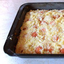 meruňkový koláč na plech tipy