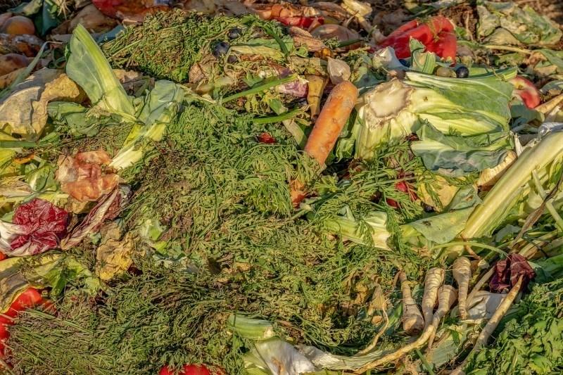 bioodpad kuchyně
