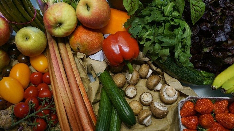 ekologie ovoce zelenina